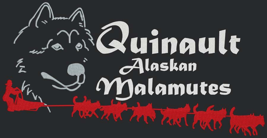 Quinault Alaskan Malamutes - Run For The Red Lantern 2014