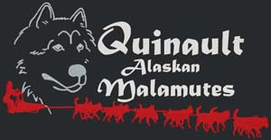 We support Quinault Alaskan Malamutes' Run For The Red Lantern Iditarod 2014!
